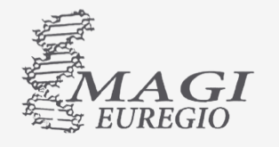 Cliente logo magi euregio
